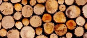 Doorzichtig hout