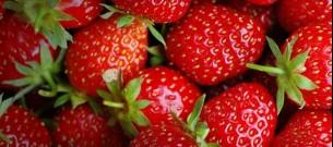 Etheenvanger voor fruit